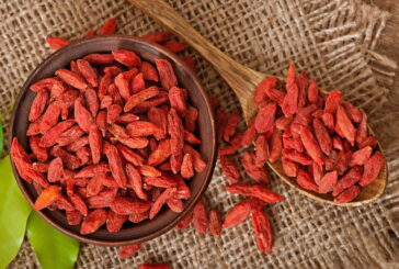 Tibetan Goji Berries - Are They an Elixir of Youth and Good Health