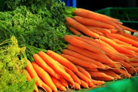 Carrot benefits for human health